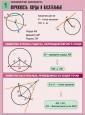 Геометрия: окружность