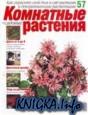 Комнатные и садовые растения № 57