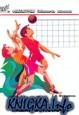 Играй в мини-волейбол