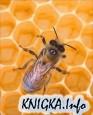 Библиотека по пчеловодству, апитерапии и медовой кулинарии