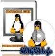 Особенности установки и настройки Damn Small Linux
