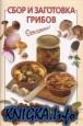 Сбор и заготовка грибов
