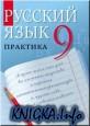 Русский язык. Практика. 9 класс