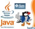 Мультимедийные Обучающие Курсы TeachPro Java