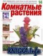 Комнатные и садовые растения № 14