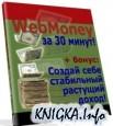 WebMoney за 30 минут
